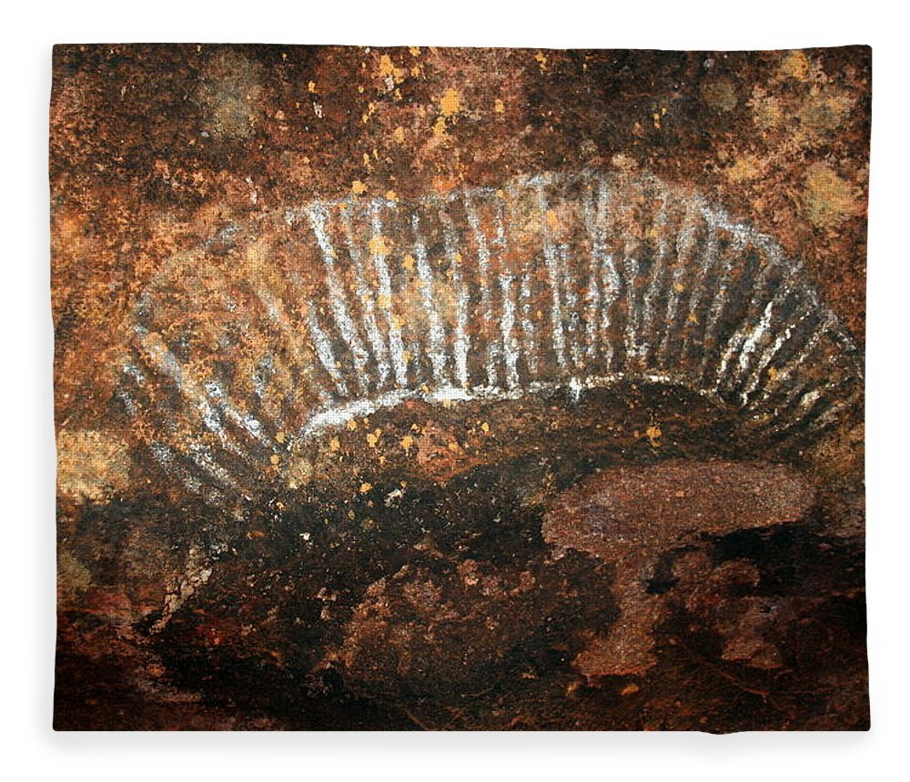 Witchittey Grub Fleece Blanket featuring the photograph Cave Painting Of A Witchittey Grub by Laurel Talabere