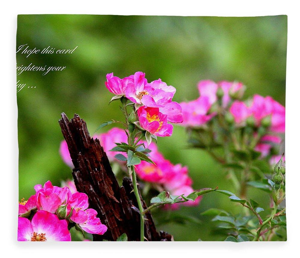 Flower Fleece Blanket featuring the photograph Cherokee Rose Card - Flower by Travis Truelove