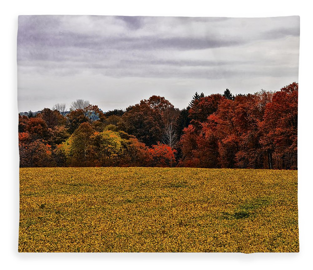 Fields Of Gold Fleece Blanket featuring the photograph Fields Of Gold by Bill Cannon