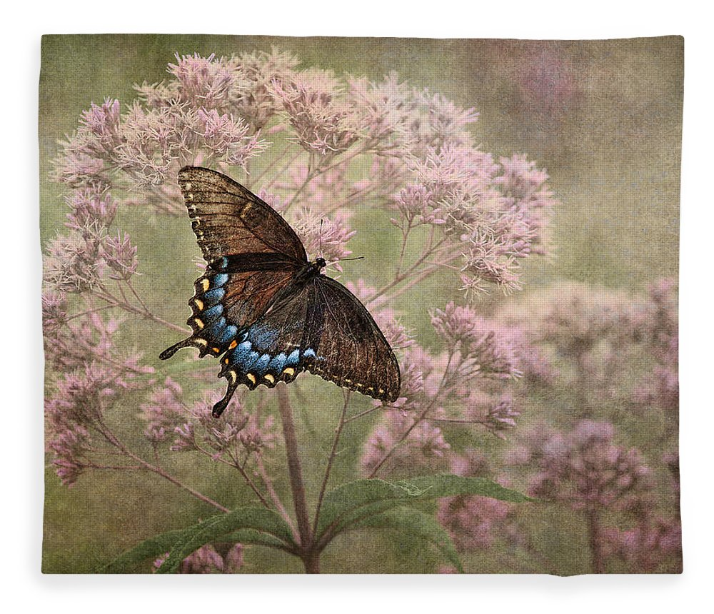 Butterfly Fleece Blanket featuring the photograph Fragile by Dale Kincaid
