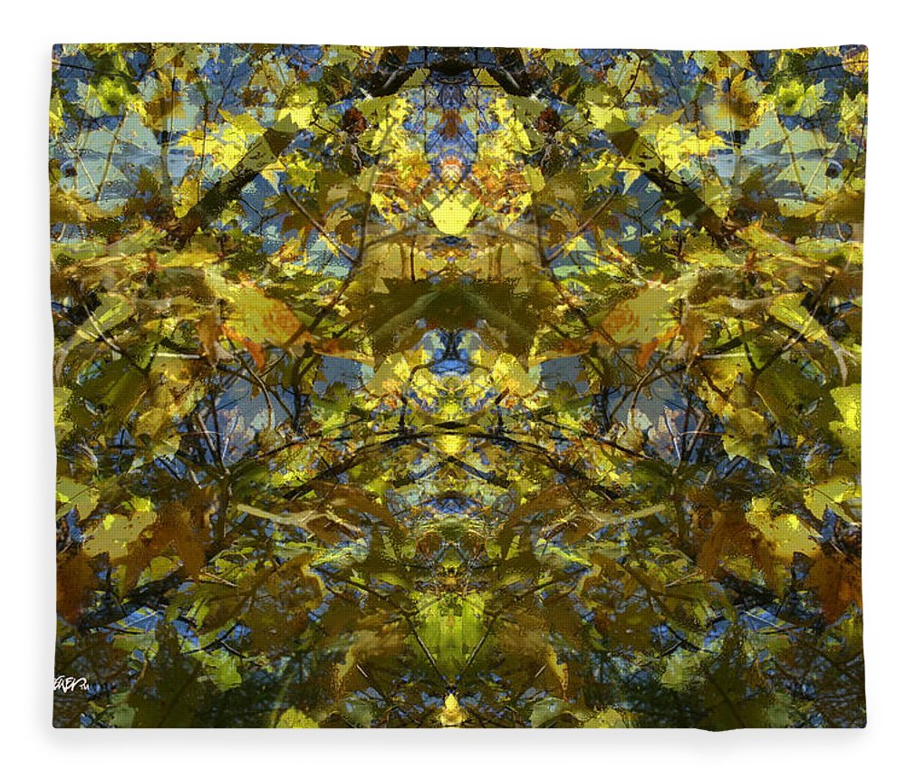 Golden Rorschach Fleece Blanket featuring the photograph Golden Rorschach by Seth Weaver