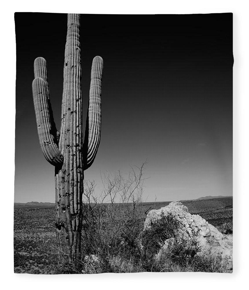 Lone Saguaro Fleece Blanket featuring the photograph Lone Saguaro by Chad Dutson