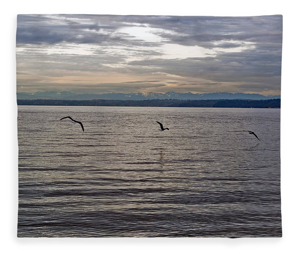 Puget Sound Fleece Blanket featuring the photograph Owen Beach by Tikvah's Hope