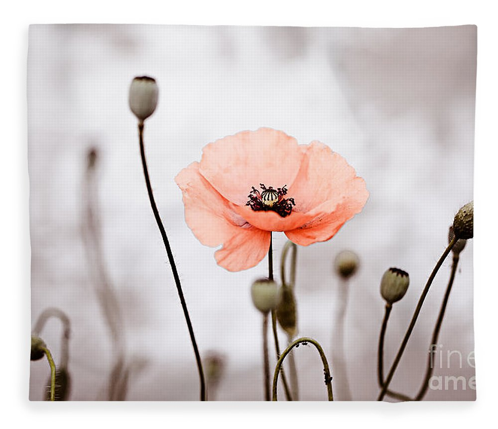 Poppy Fleece Blanket featuring the photograph Red Corn Poppy Flowers 01 by Nailia Schwarz