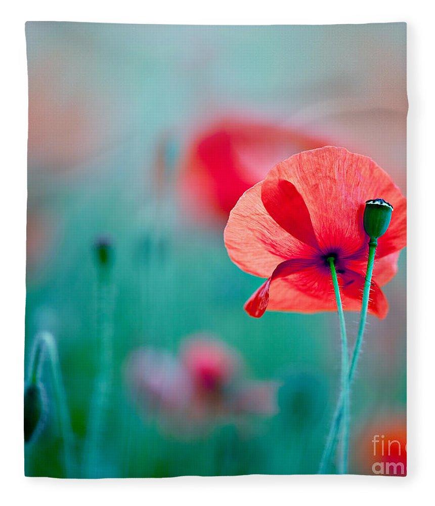 Poppy Fleece Blanket featuring the photograph Red Corn Poppy Flowers 04 by Nailia Schwarz
