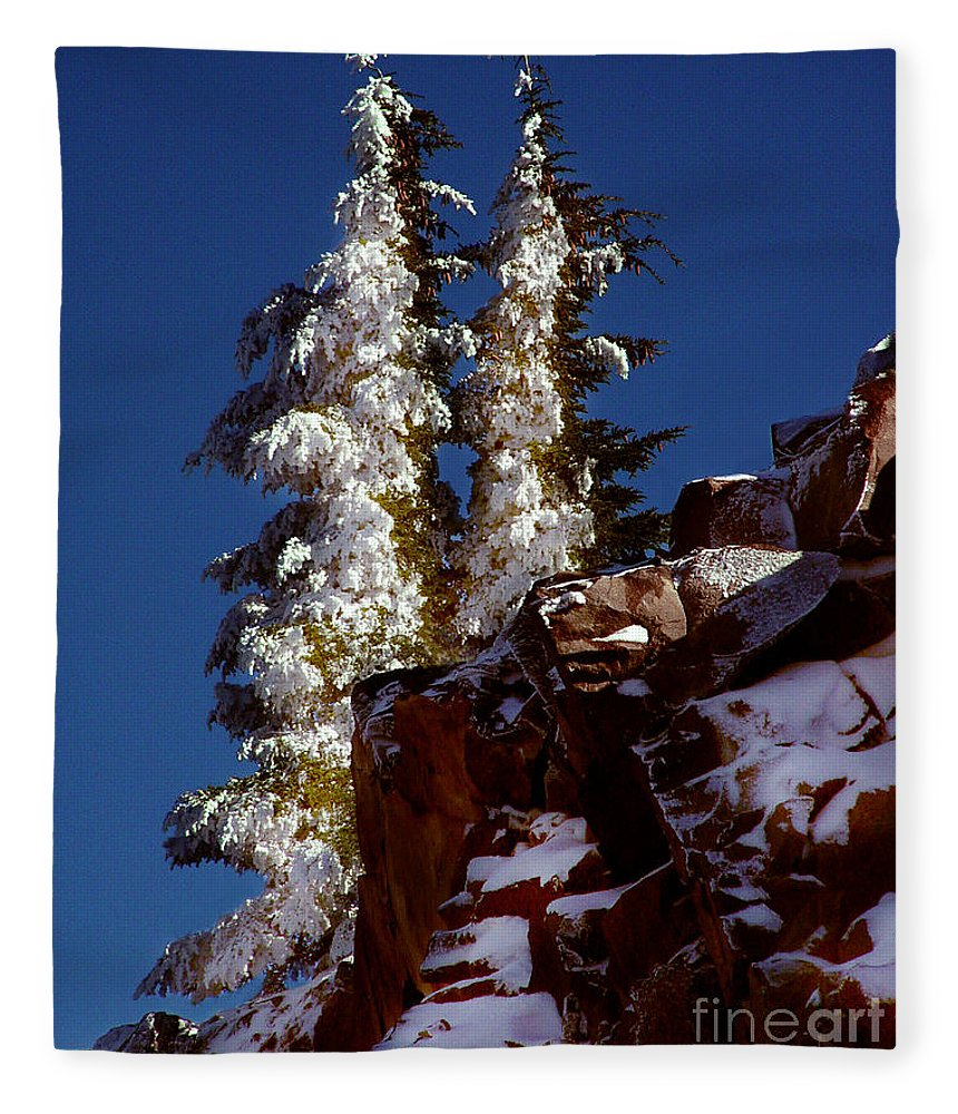 Snow Tipped Trees Fleece Blanket featuring the photograph Snow Tipped Trees by Peter Piatt