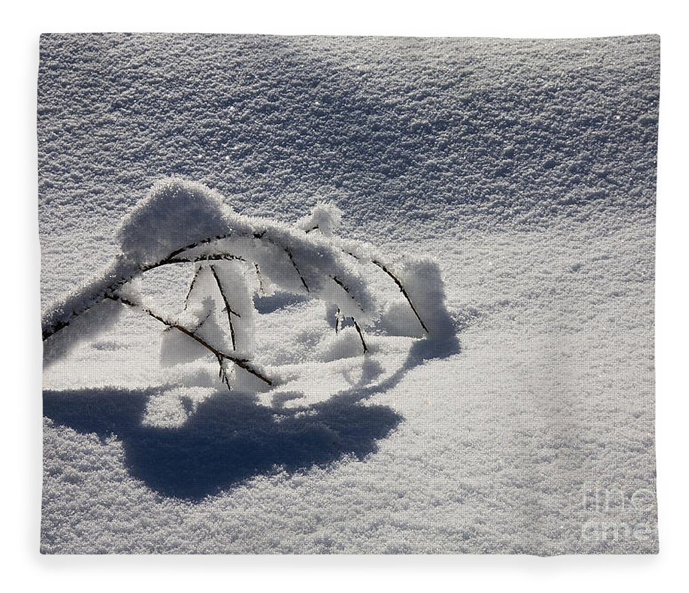 Sapling Fleece Blanket featuring the photograph The Weight of Winter by Mike Dawson