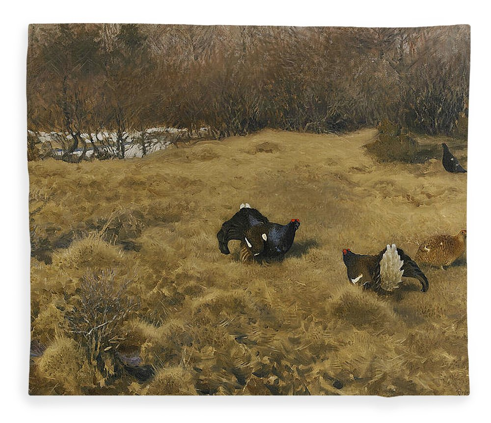 Swedish Art Fleece Blanket featuring the painting Black Grouse Displaying by Bruno Liljefors