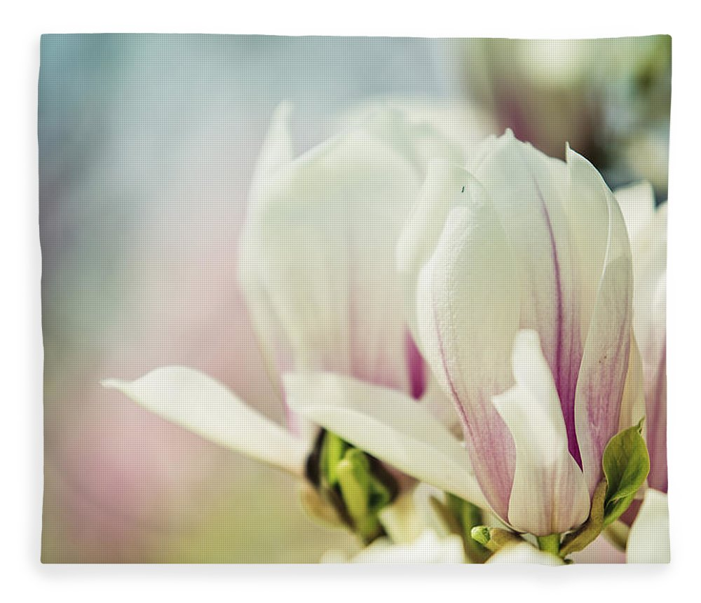 Magnolia Fleece Blanket featuring the photograph Magnolia by Nailia Schwarz