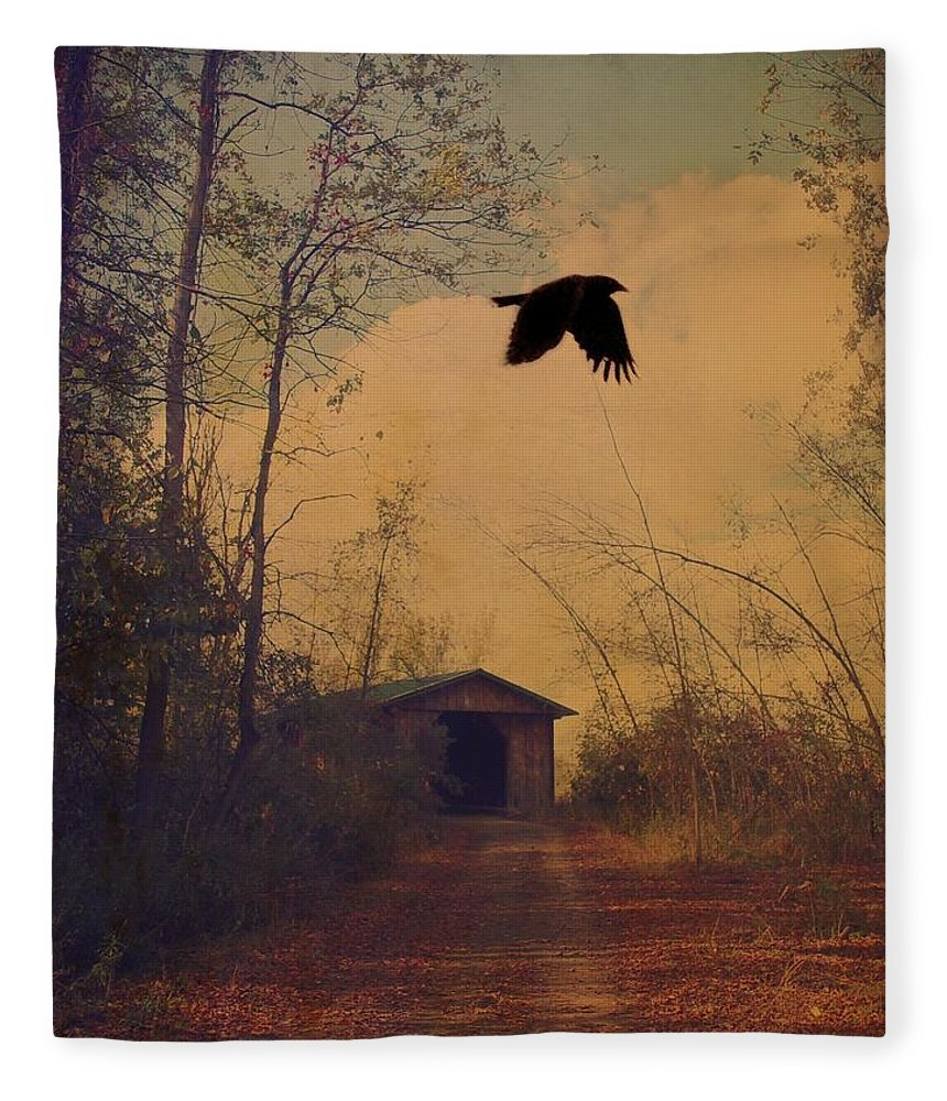 Retro Colors Fleece Blanket featuring the photograph Lone Crow Flies Over The Old Country Road by Gothicrow Images