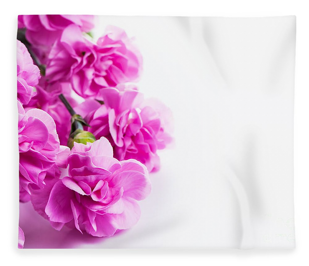 Pink Soft Spring Flowers Bouquet On White Background Fleece Blanket