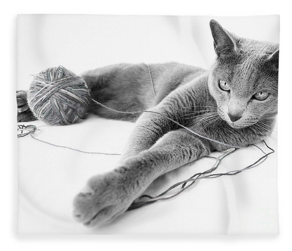 Russian Fleece Blanket featuring the photograph Russian Blue by Nailia Schwarz