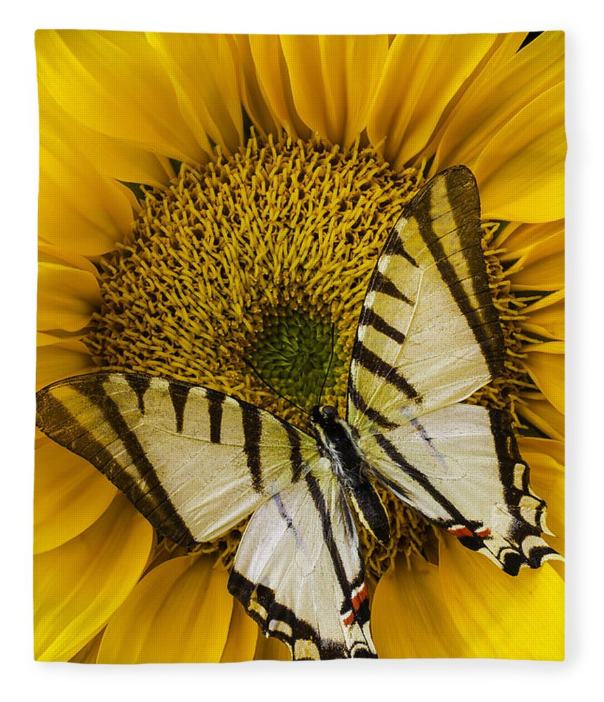 Yellow Fleece Blanket featuring the photograph White Butterfly On Sunflower 1 by Garry Gay
