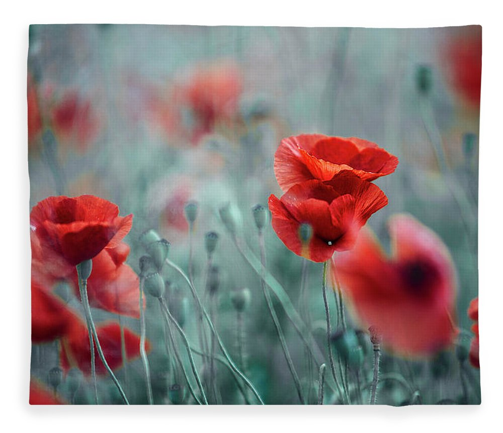 Poppy Fleece Blanket featuring the photograph Summer Poppy Meadow by Nailia Schwarz