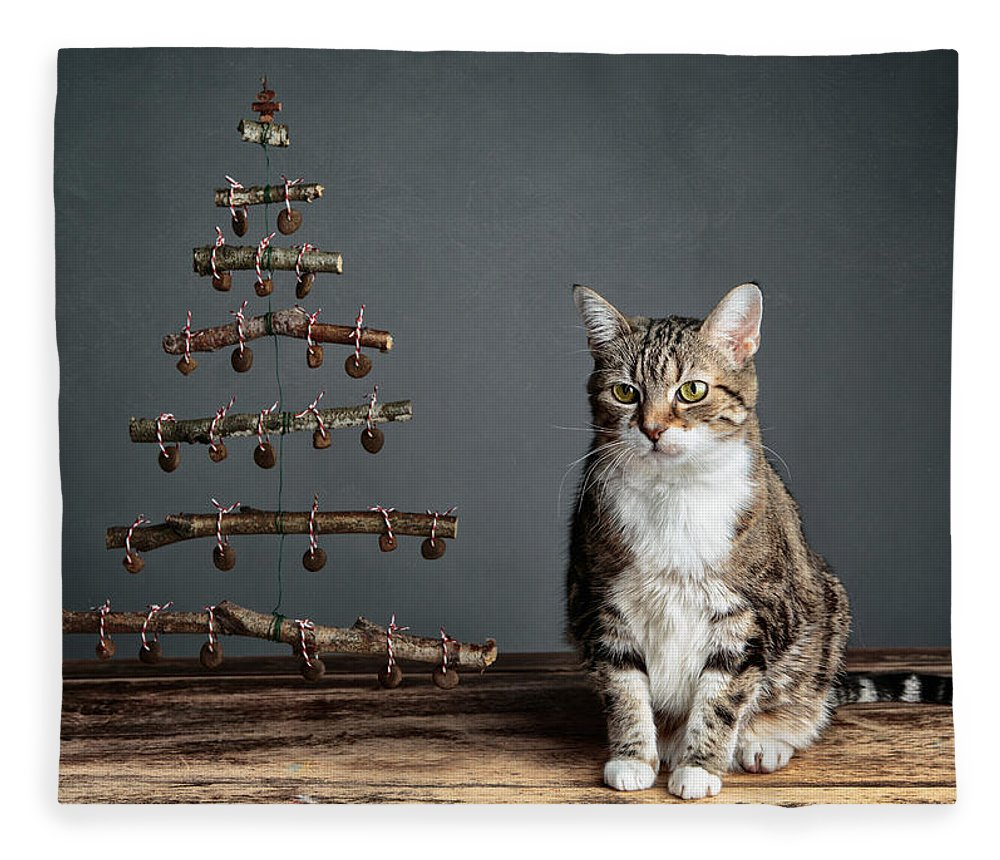 Cat Fleece Blanket featuring the photograph Cat Christmas by Nailia Schwarz