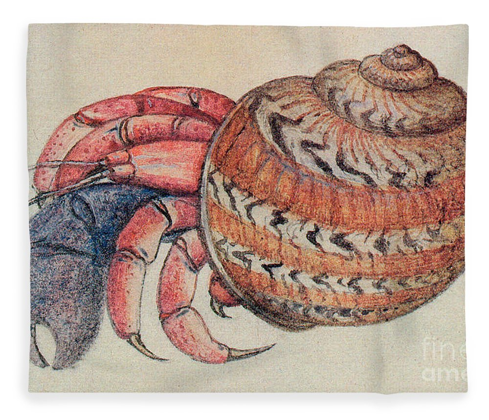 Hermit Crab Fleece Blanket featuring the drawing Hermit Crab by John White