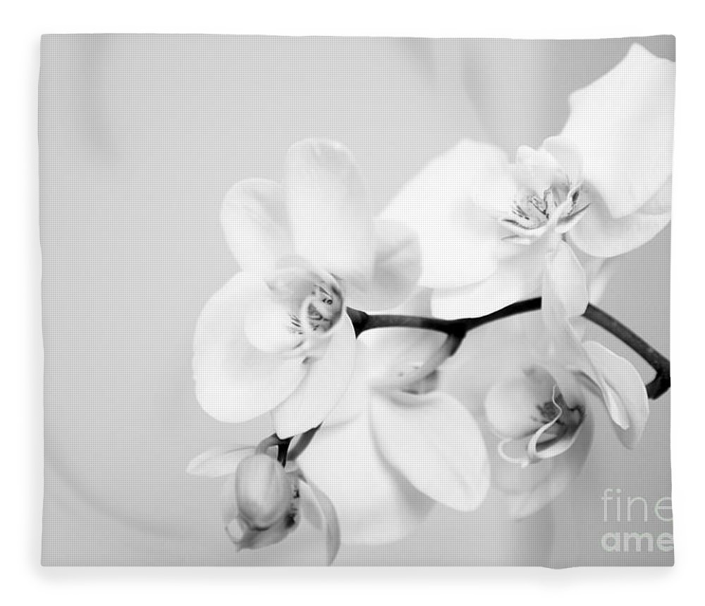 Orchid Fleece Blanket featuring the photograph Orchid by Amanda Barcon