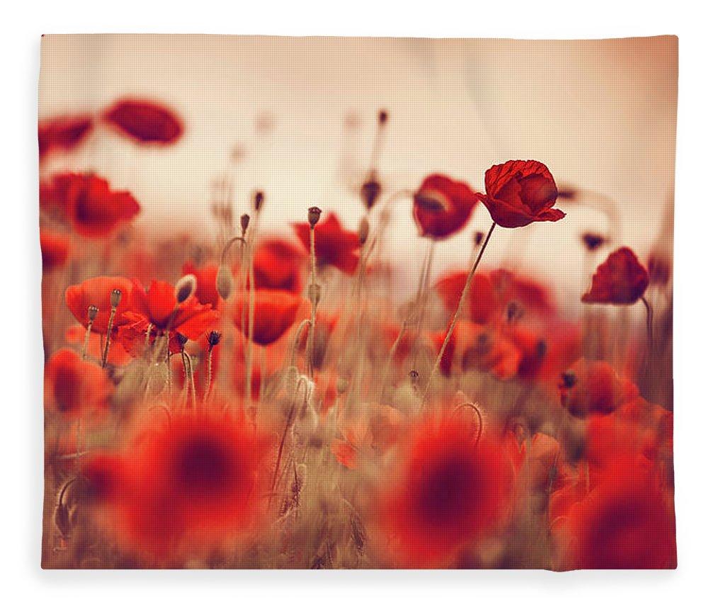 Poppy Fleece Blanket featuring the photograph Summer Poppy Meadow by Nailia Schwarz