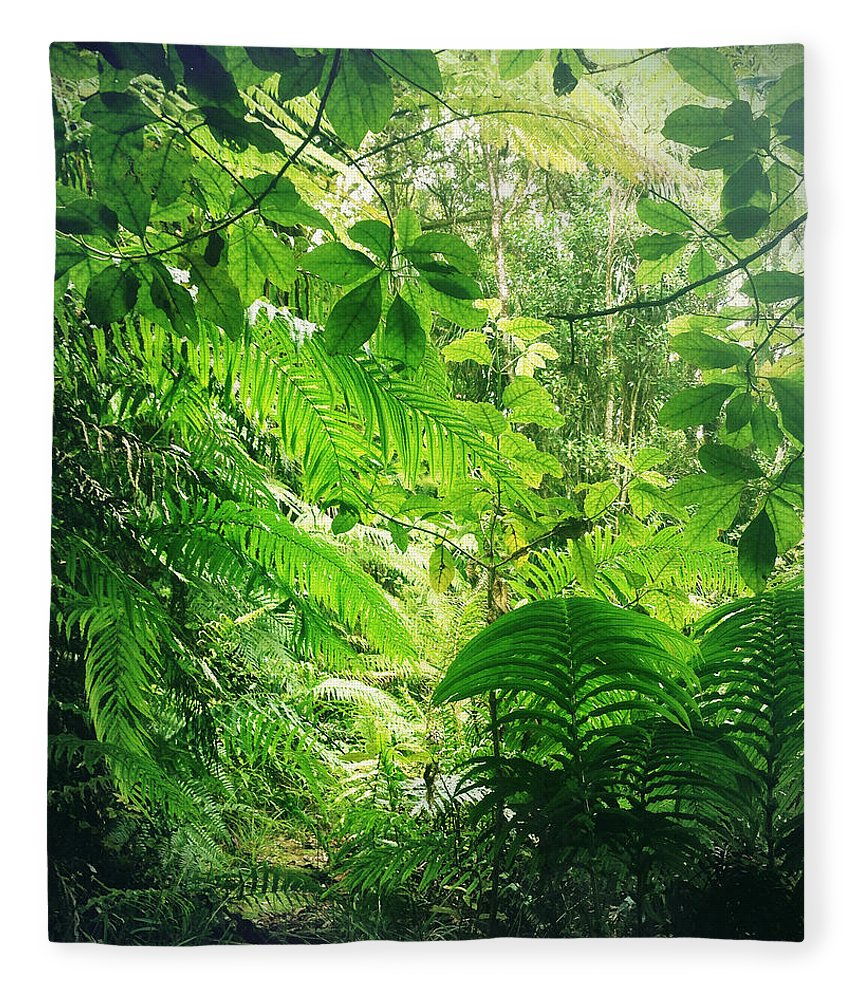 Rain Forest Fleece Blanket featuring the photograph Jungle Leaves by Les Cunliffe