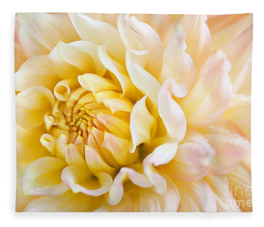 Dahlia Fleece Blanket featuring the photograph Dahlia by Nailia Schwarz