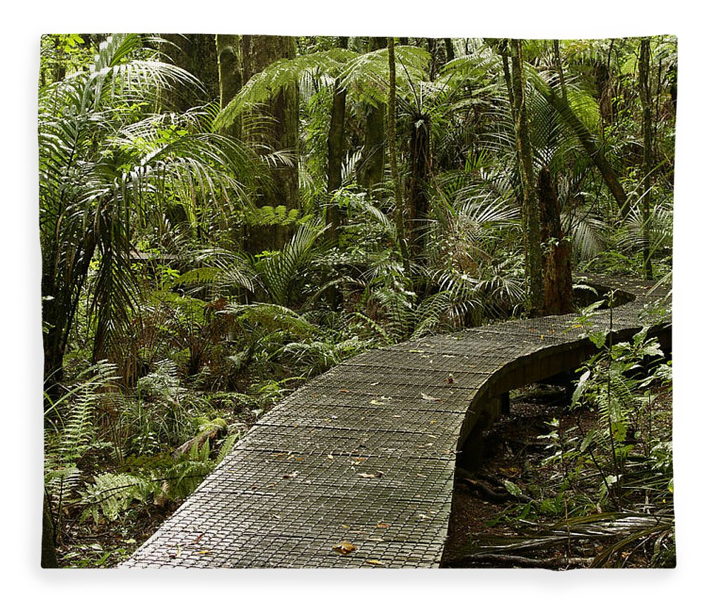Rain Forest Fleece Blanket featuring the photograph Forest Boardwalk by Les Cunliffe