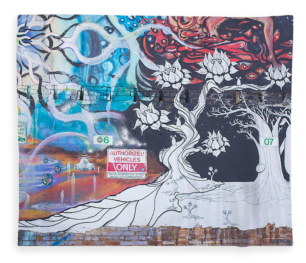 Art Fleece Blanket featuring the photograph Freak Alley Boise by Dart Humeston