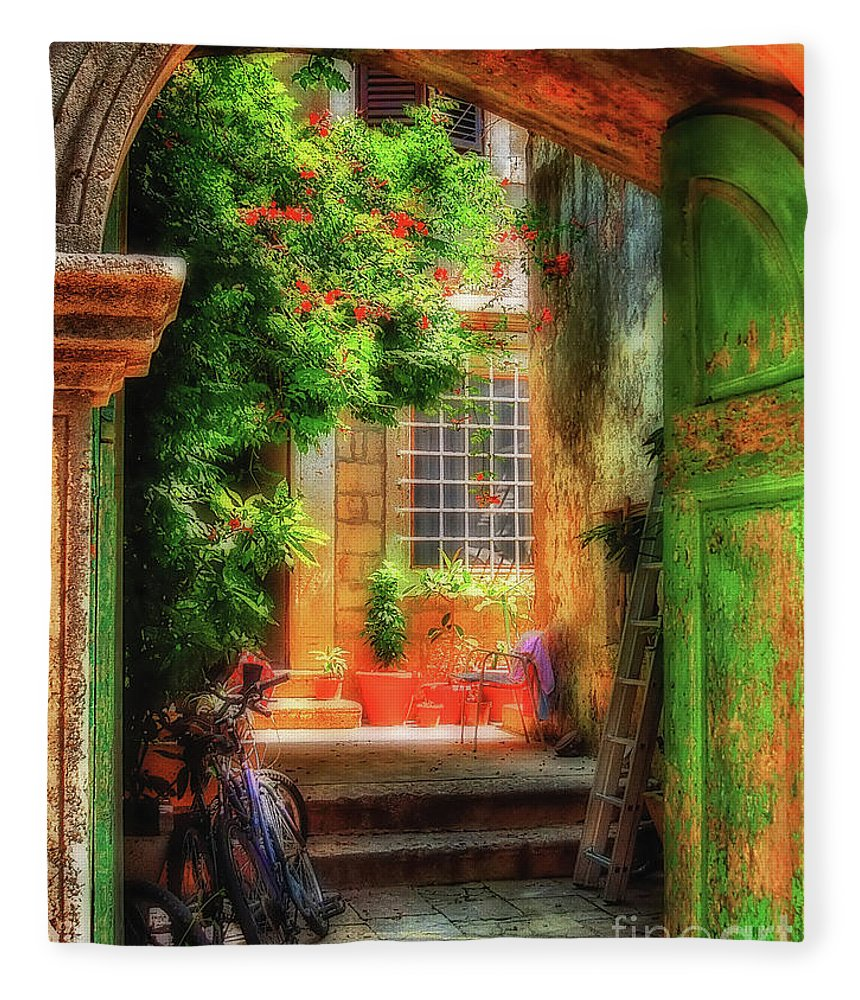 Doorway Fleece Blanket featuring the photograph A Glimpse by Lois Bryan