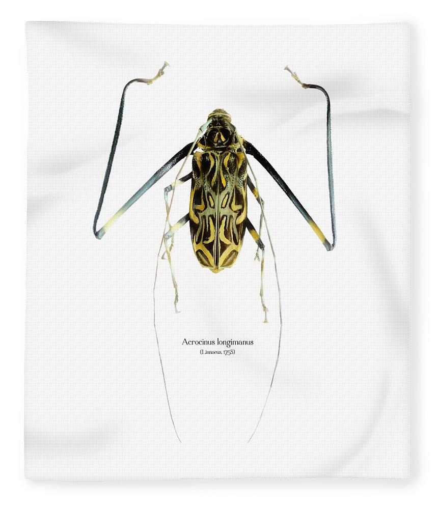 Nature Fleece Blanket featuring the digital art Acrocinus II by Geronimo Martin Alonso
