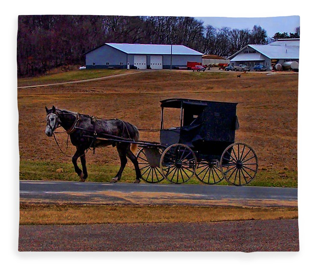 Wisconsin Fleece Blanket featuring the photograph Amish Buggy by Tommy Anderson