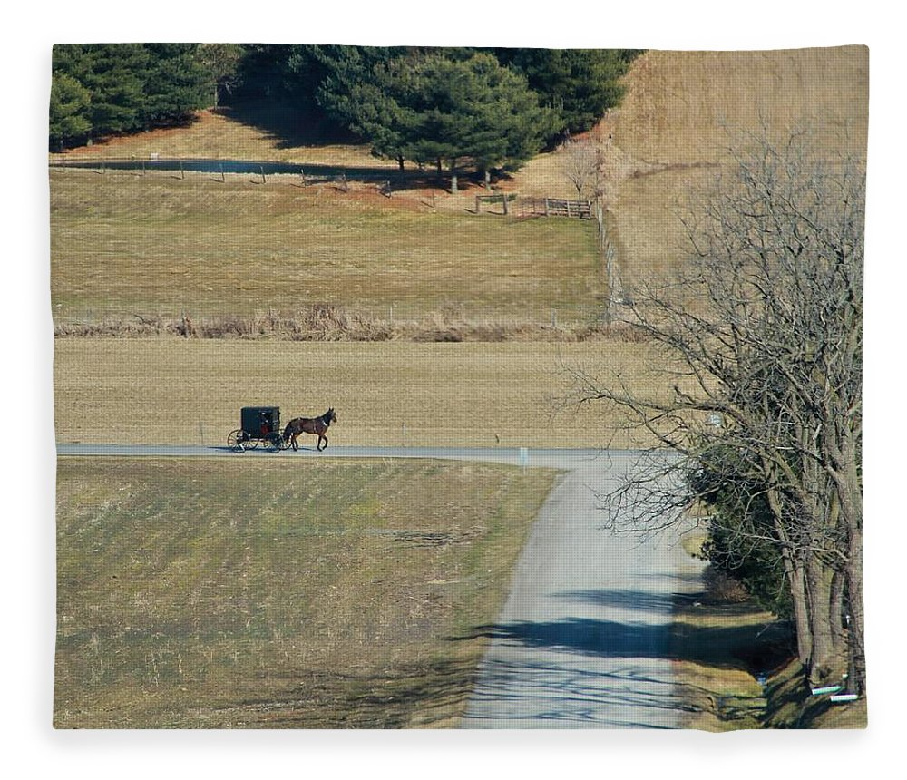 Amish Horse And Buggy In Ohio Fleece Blanket featuring the photograph Amish Horse And Buggy On A Country Road by Dan Sproul