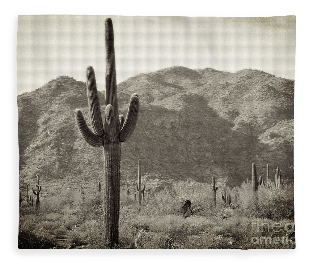 White Tank Sunset Fleece Blanket featuring the photograph Arizona Desert by Methune Hively