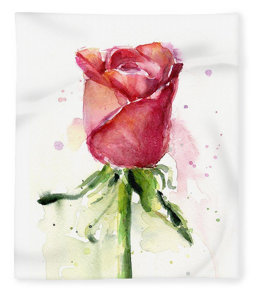 Rose Fleece Blanket featuring the painting Rose Watercolor by Olga Shvartsur
