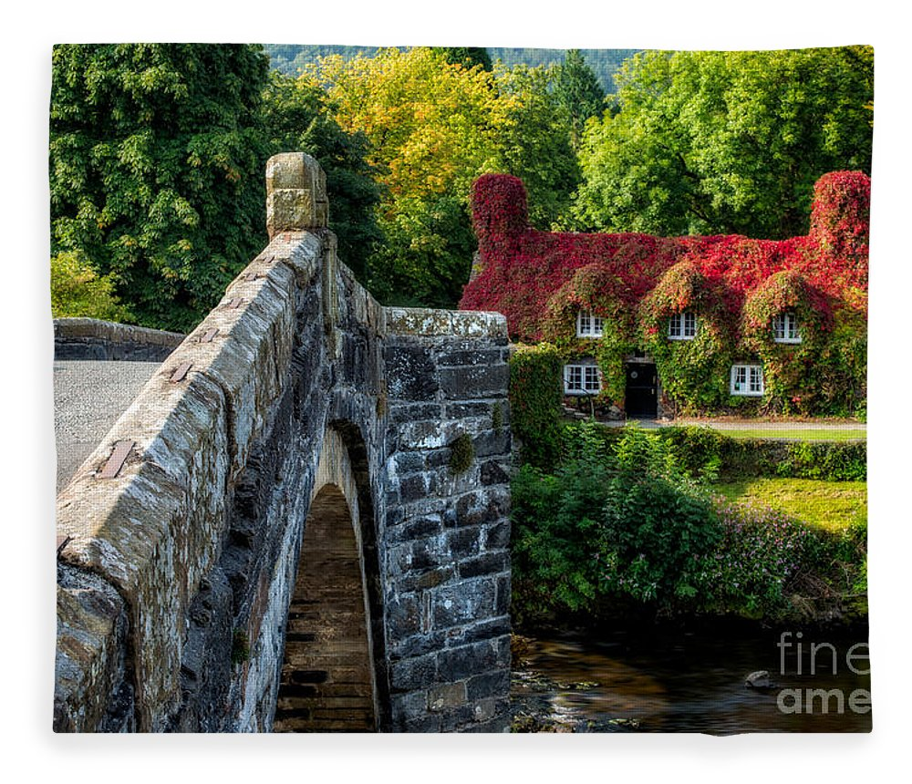 Autumn Fleece Blanket featuring the photograph Autumn Colours by Adrian Evans