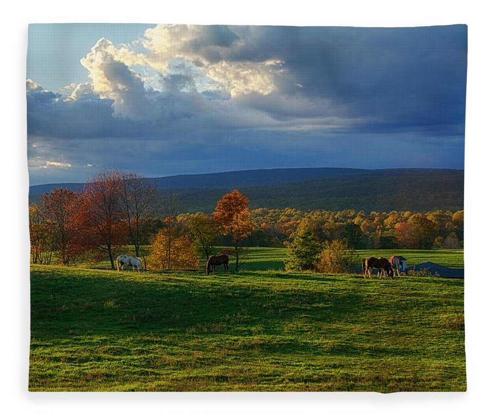Farm Fleece Blanket featuring the photograph Autumn Evening by Eleanor Bortnick