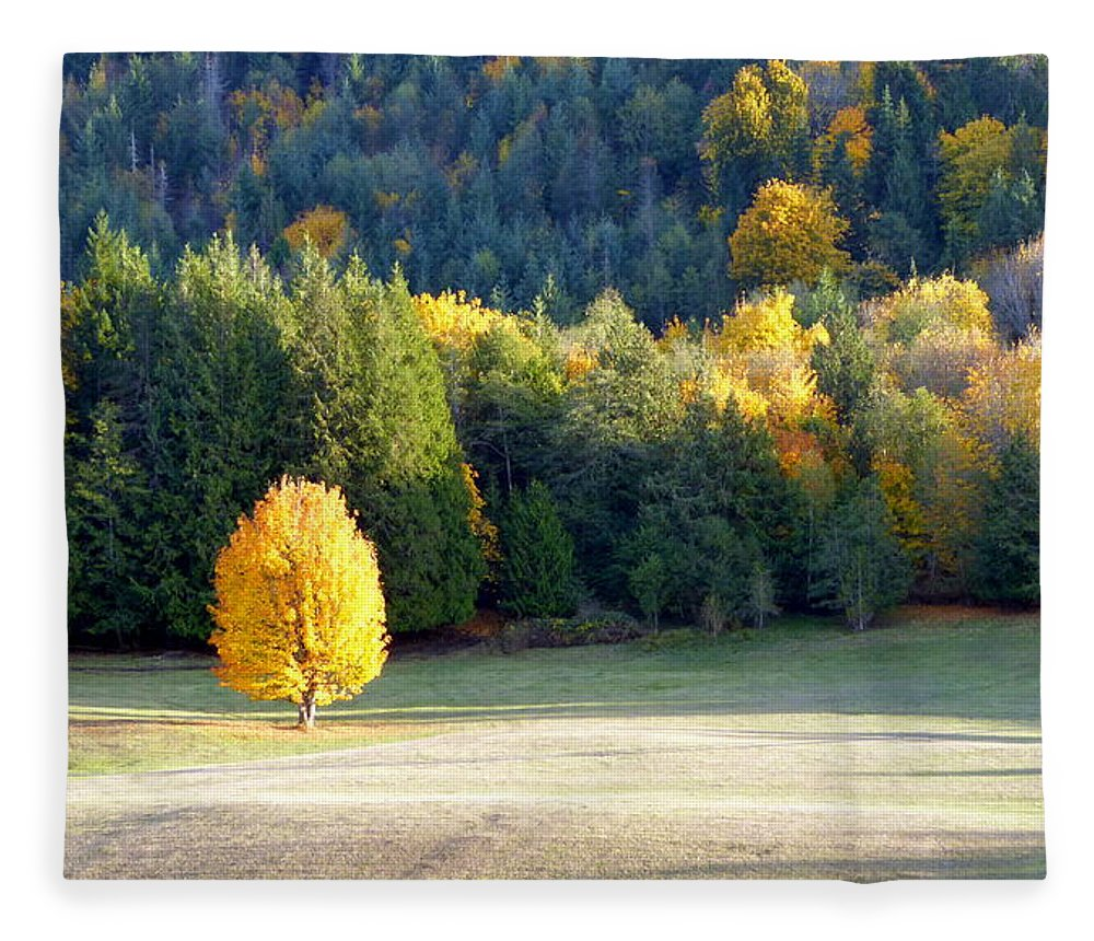 Autumn Fleece Blanket featuring the photograph Autumn Gold by Elaine Bawden