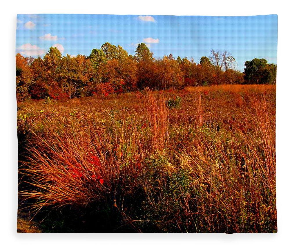 Autumn Fleece Blanket featuring the painting Autumns Field by Scott Heaton