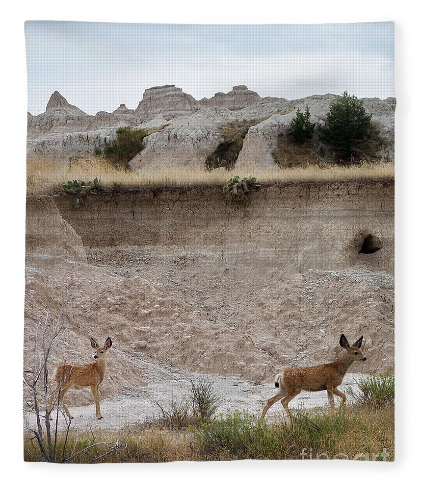 Badlands Fleece Blanket featuring the photograph Badlands Deer Sd by Tommy Anderson
