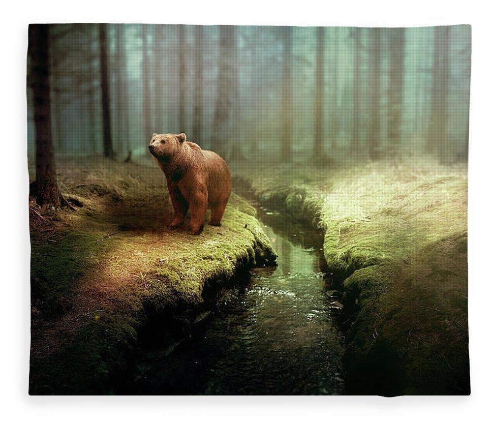 Bear Fleece Blanket featuring the photograph Bear Mountain Fantasy by David Dehner