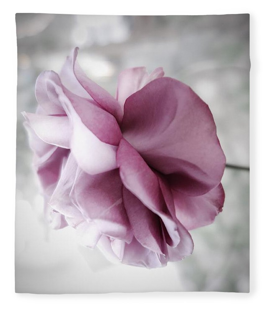 Floral Fleece Blanket featuring the photograph Beautiful Lavender Rose by Tara Shalton