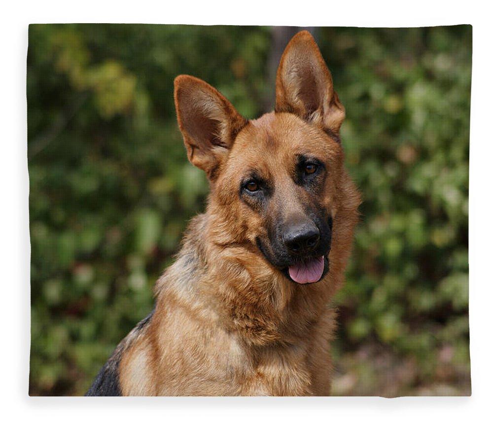 Black And Red German Shepherd Dog Fleece Blanket For Sale By Sandy