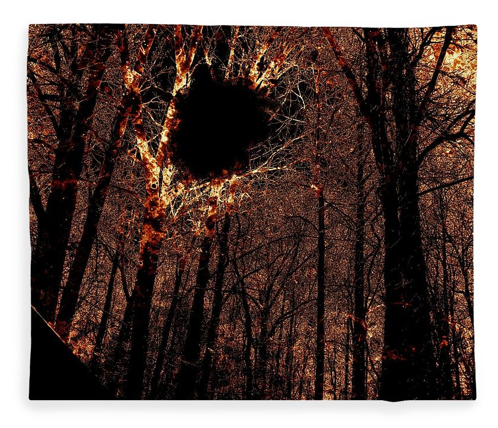 Fire Fleece Blanket featuring the photograph Black Hole Sun by Charleen Treasures