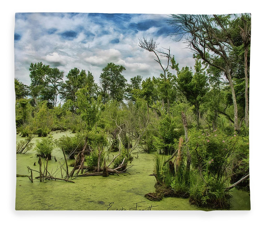 Blackwater Fleece Blanket featuring the photograph Blackwater Swamp by Erika Fawcett