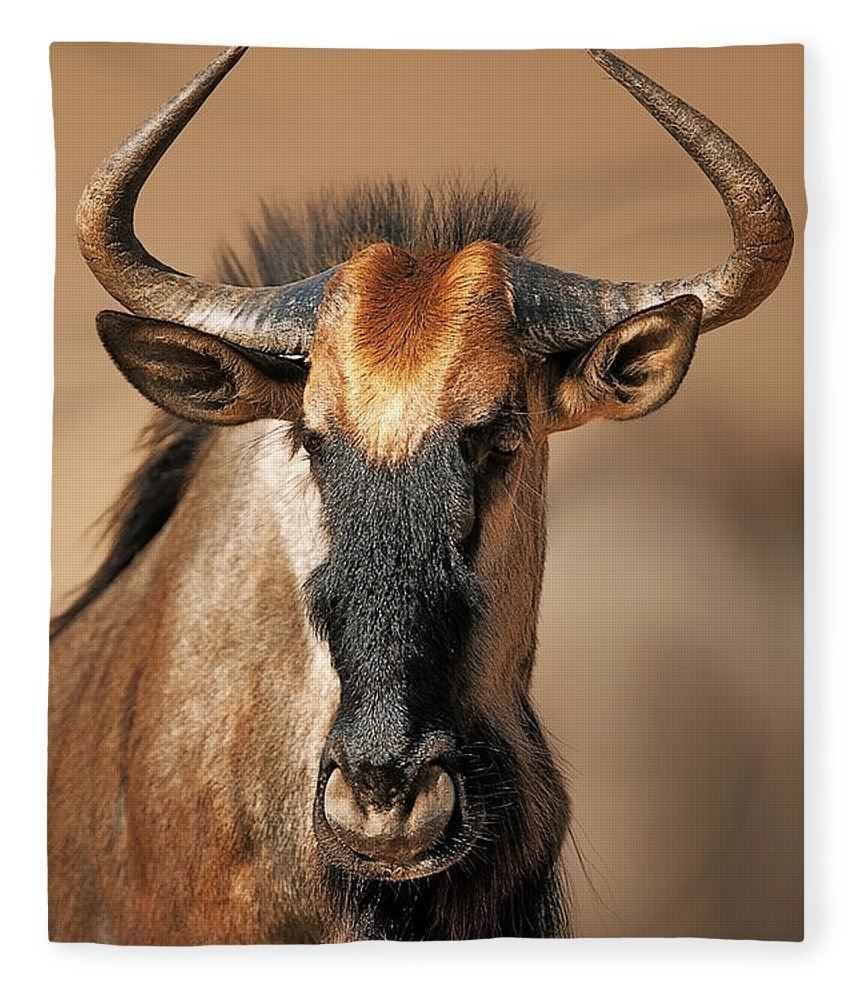 Wildebeest Fleece Blanket featuring the photograph Blue Wildebeest Portrait by Johan Swanepoel