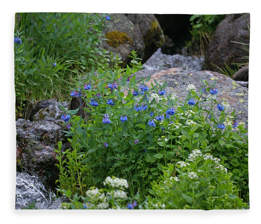 Wildflowers Fleece Blanket featuring the photograph Bluebells by Heather Coen