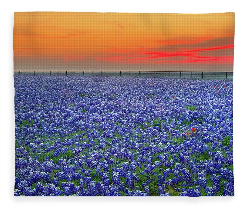 Texas Bluebonnets Fleece Blanket featuring the photograph Bluebonnet Sunset Vista - Texas landscape by Jon Holiday
