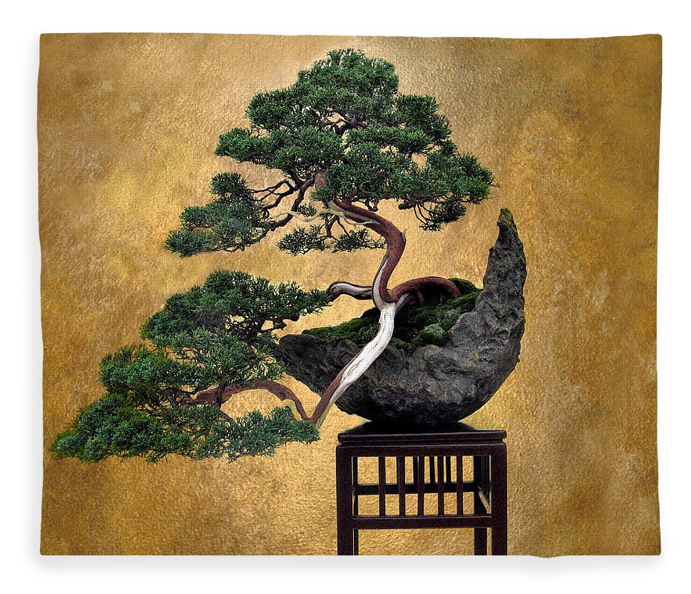 Tree Fleece Blanket featuring the photograph Bonsai 3 by Jessica Jenney