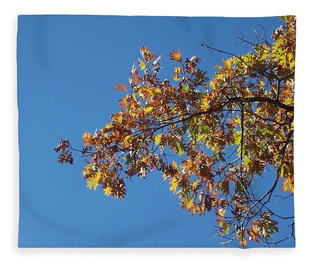 Branch Fleece Blanket featuring the photograph Bright Autumn Branch by Michelle Miron-Rebbe