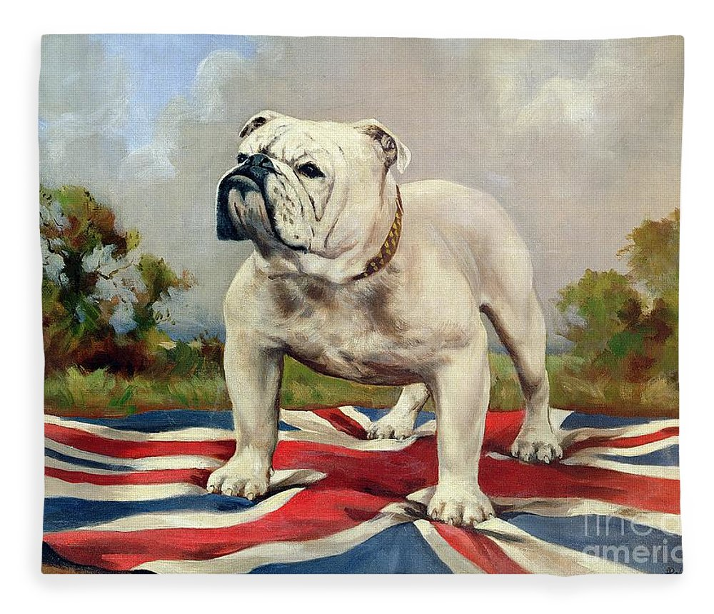 Grb; Union Jack; Dog Fleece Blanket featuring the painting British Bulldog by English School