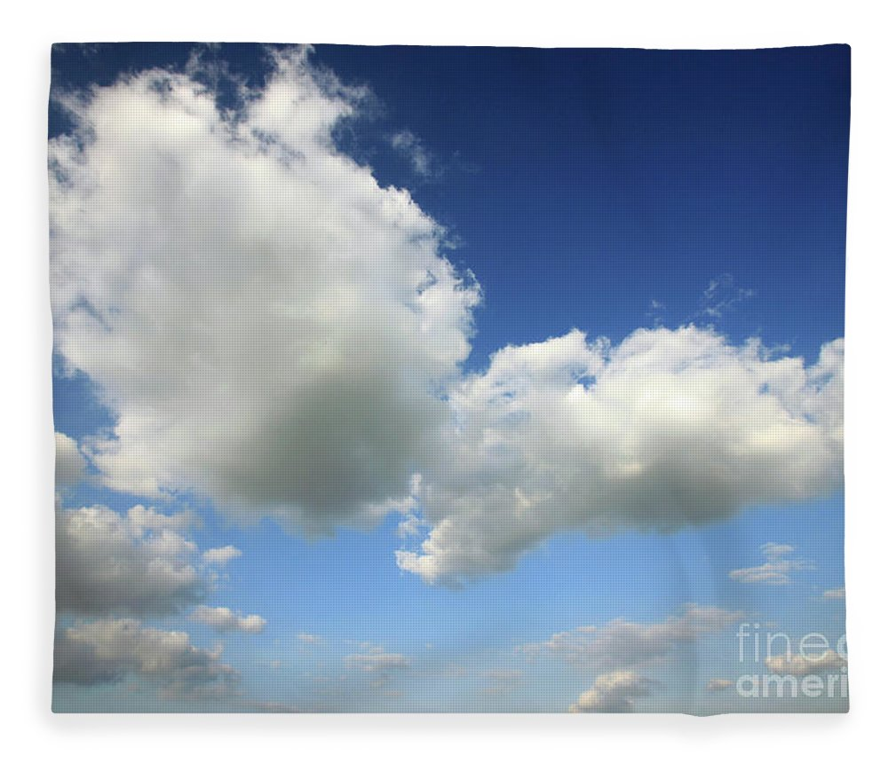 Sky Fleece Blanket featuring the photograph Butterfly by Deborah Brodie