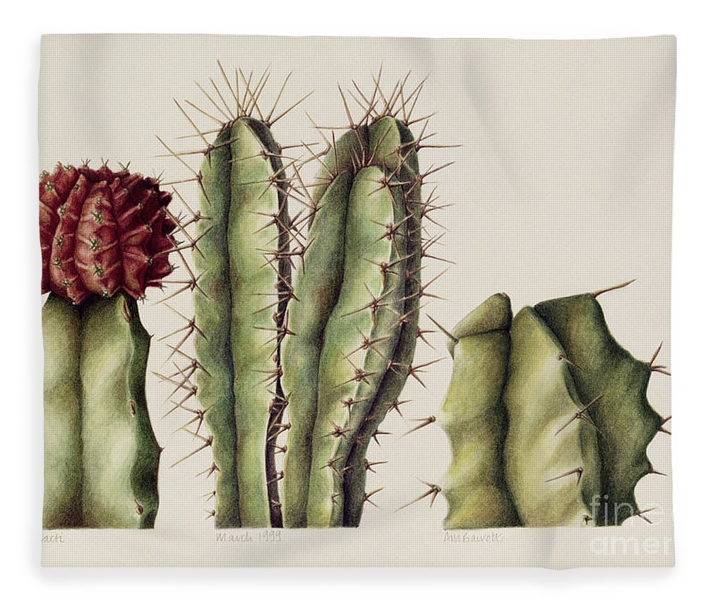 Botanical Fleece Blanket featuring the painting Cacti by Annabel Barrett